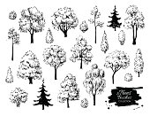 Big set of hand drawn tree sketches.