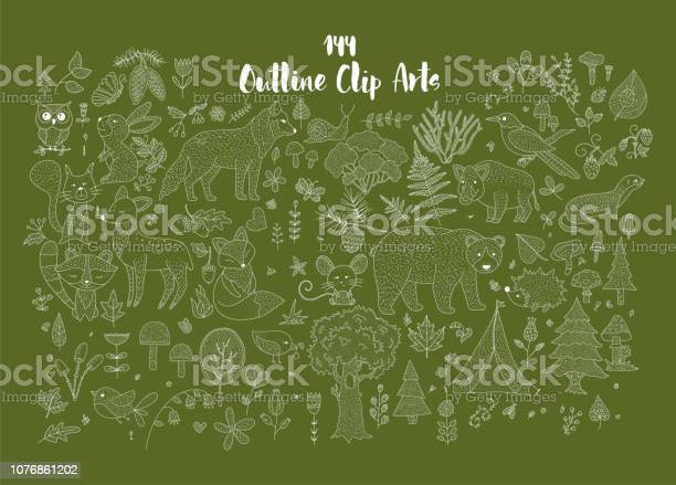 Big set of hand drawn utline forest illustraitions with wild animals vector id1076861202?b=1&k=6&m=1076861202&s=612x612&h=yaf1gzil7gcb bc8xw96c6qgdaftxrf8vcroaxyrfdq=