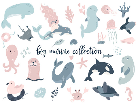 Big set of marine animals and mermaid. dolphin, orca, whale, turtle, beluga, seal, sea-cow, octopus, skate, jellyfish, penguin. Perfect for baby prints