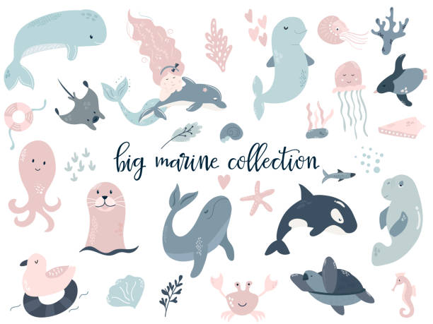 Big set of marine animals and mermaid. dolphin, orca, whale, turtle, beluga, seal, sea-cow, octopus, skate, jellyfish, penguin. Perfect for baby prints Big set of marine animals and mermaid. dolphin, orca, whale, turtle, beluga, seal, sea-cow, octopus, skate, jellyfish, penguin. Perfect for baby prints. beluga whale stock illustrations