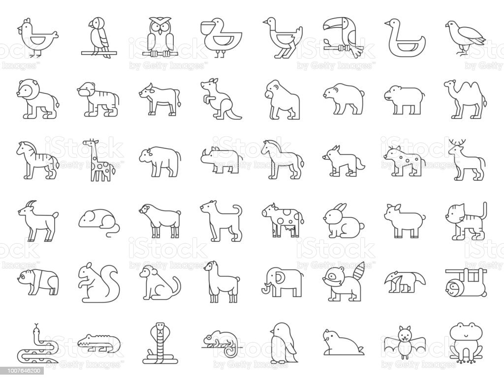 Big set of safari, arctic, forest, zoo animal and bird such as tiger, seal, camel, sloth, kangaroo, frog, pelican, parrot, toucan icon, thin line vector art illustration