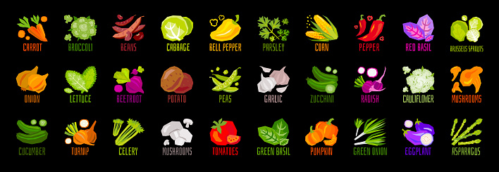 Big set of vegetables nuts herbs spice condiment icons isolated on black background. Colorful leaves lettering.