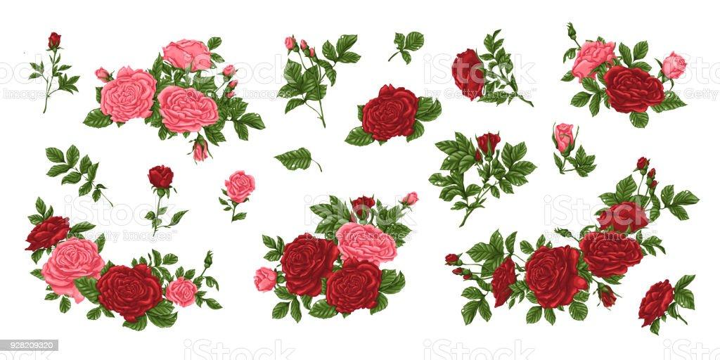 Vetor De Grande Conjunto De Rosas Amarelas E Vermelhas Buquês Flores