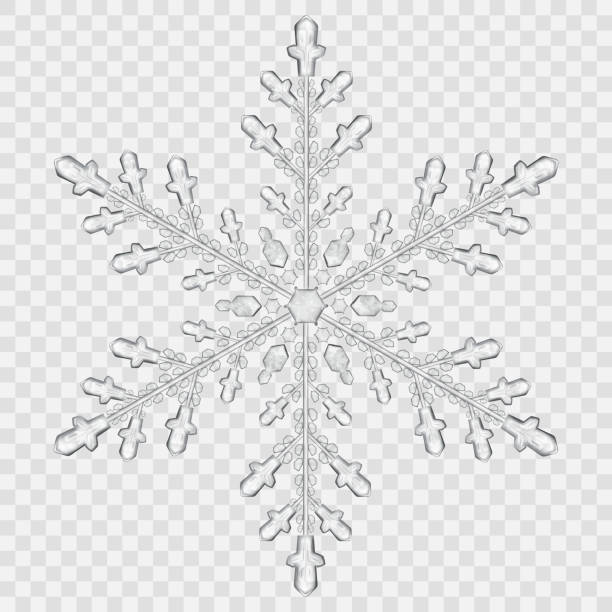 Big translucent crystal snowflake Big translucent crystal snowflake in gray colors on transparent background. Transparency only in vector file. Vector illustrations. EPS10 and JPG are available ice crystal stock illustrations