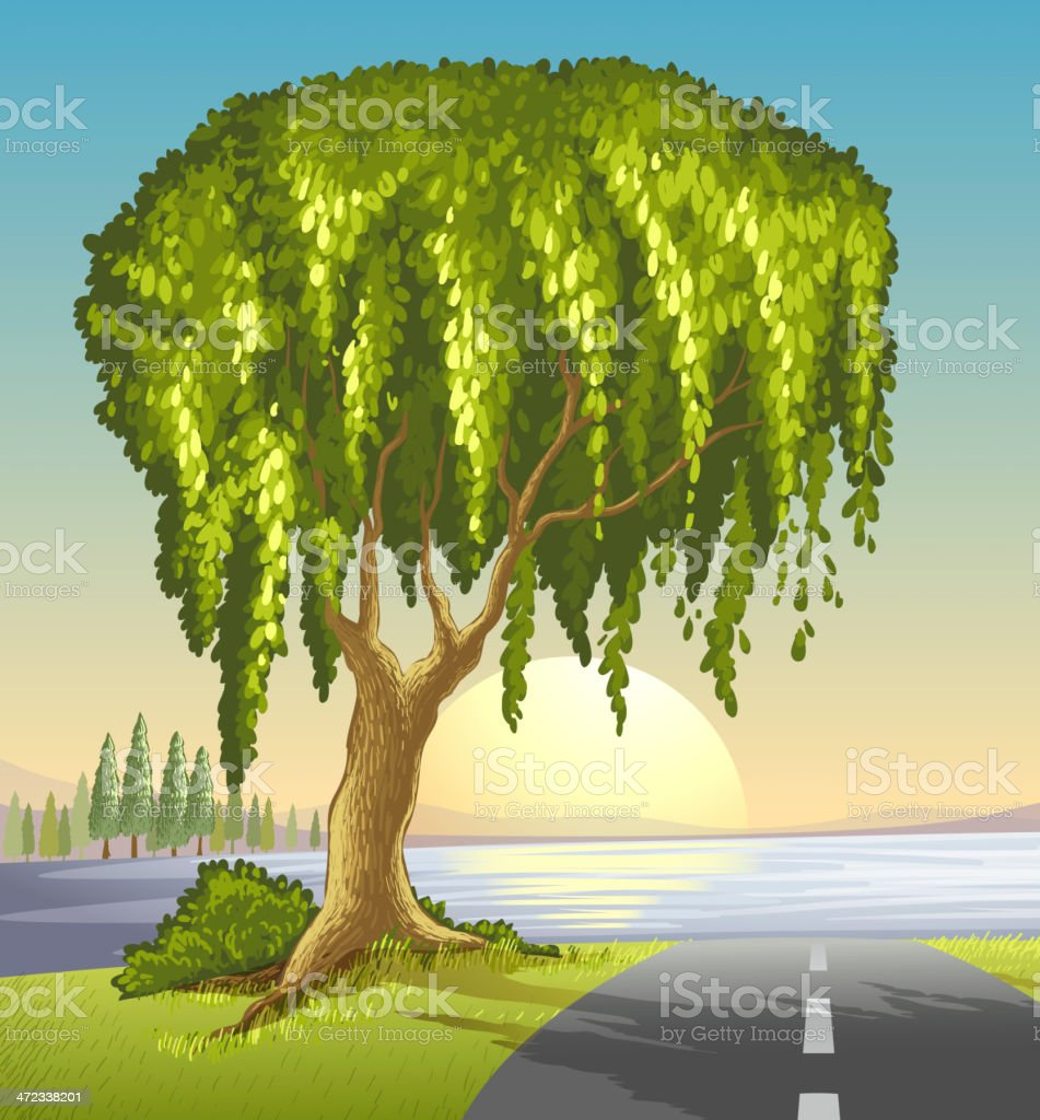 big tree at the road royalty-free stock vector art