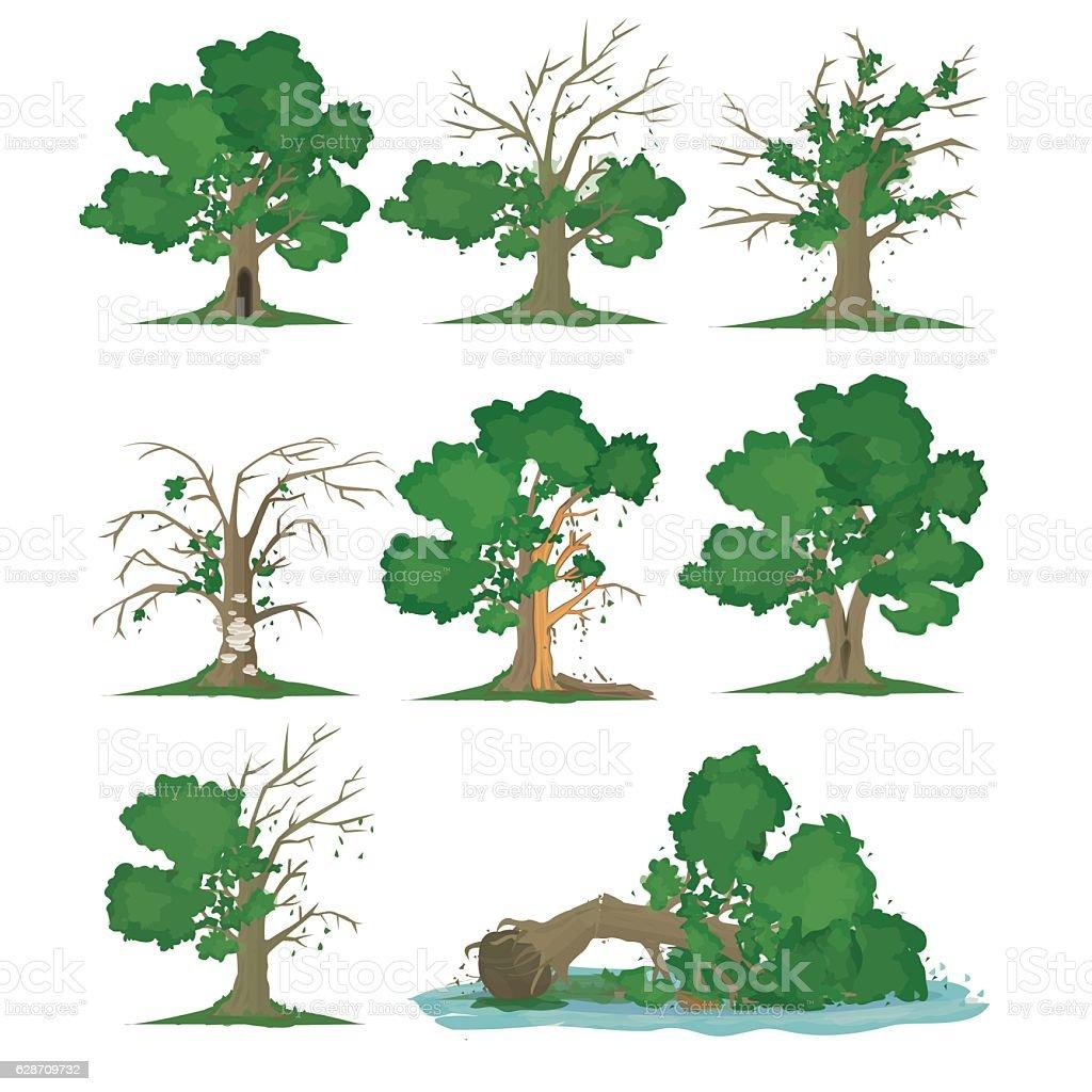 Big Tree Problem vector art illustration