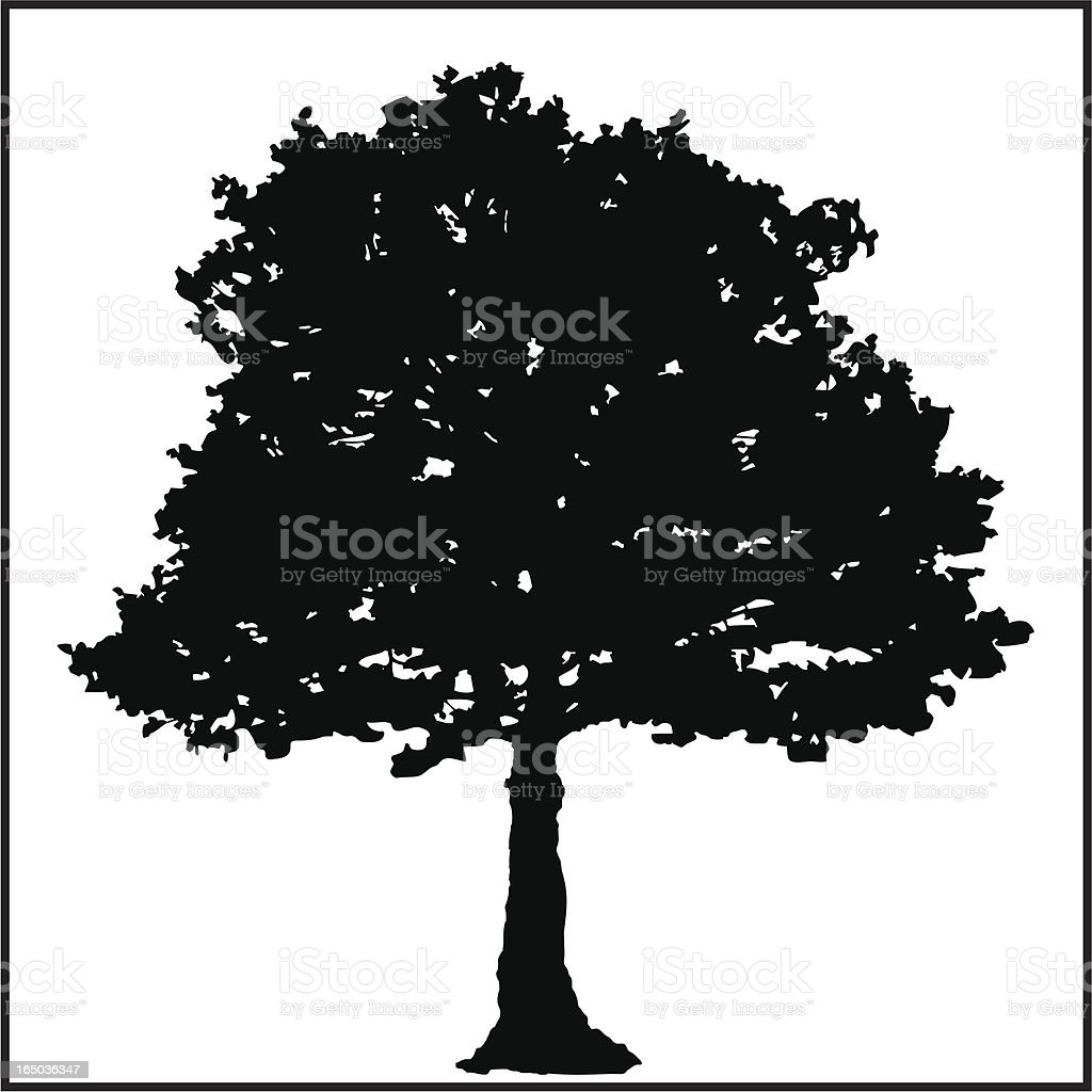 Big Tree royalty-free stock vector art