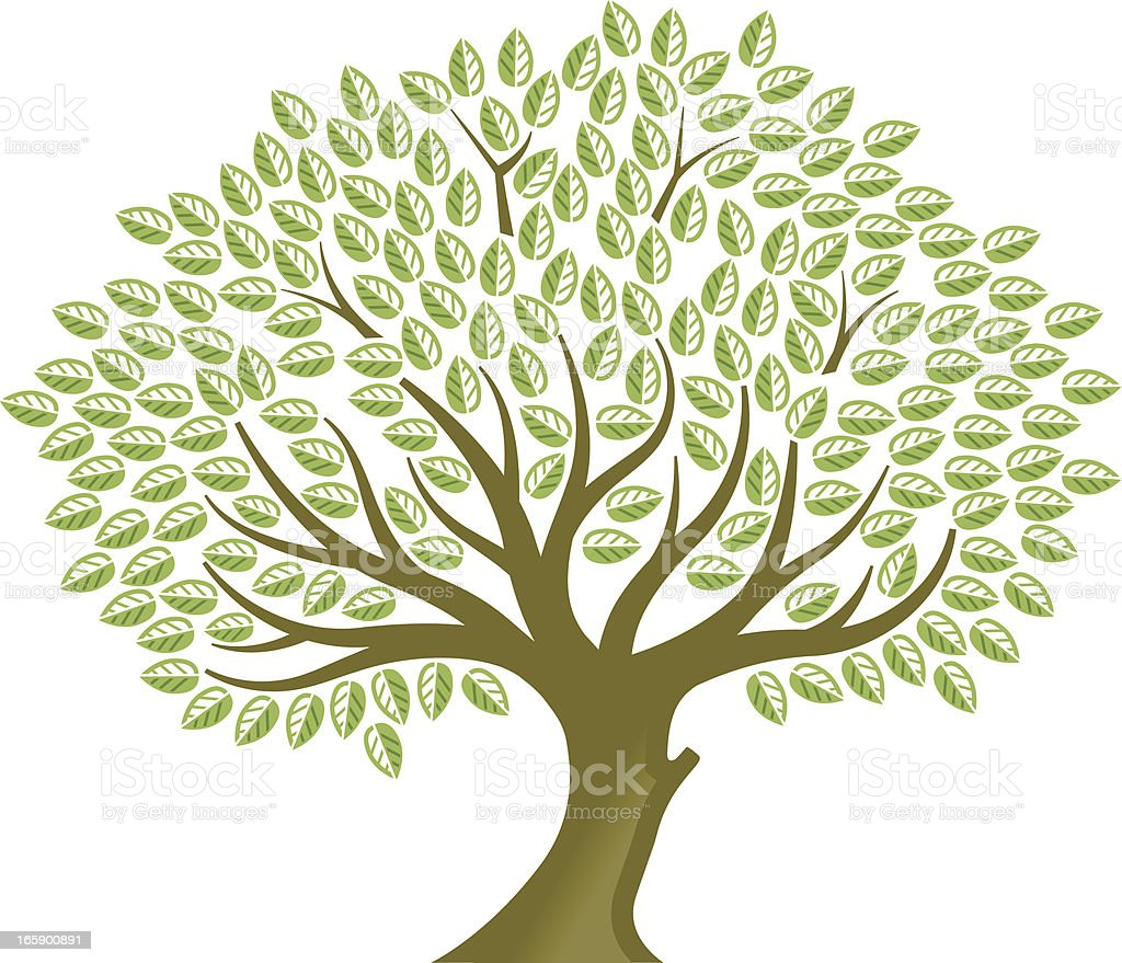 Big tree royalty-free big tree stock vector art & more images of branch - plant part