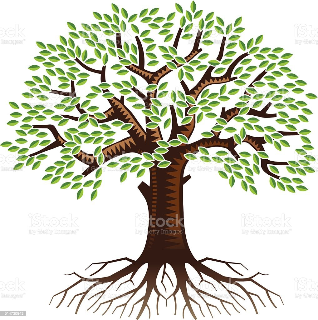 Big tree with roots vector art illustration