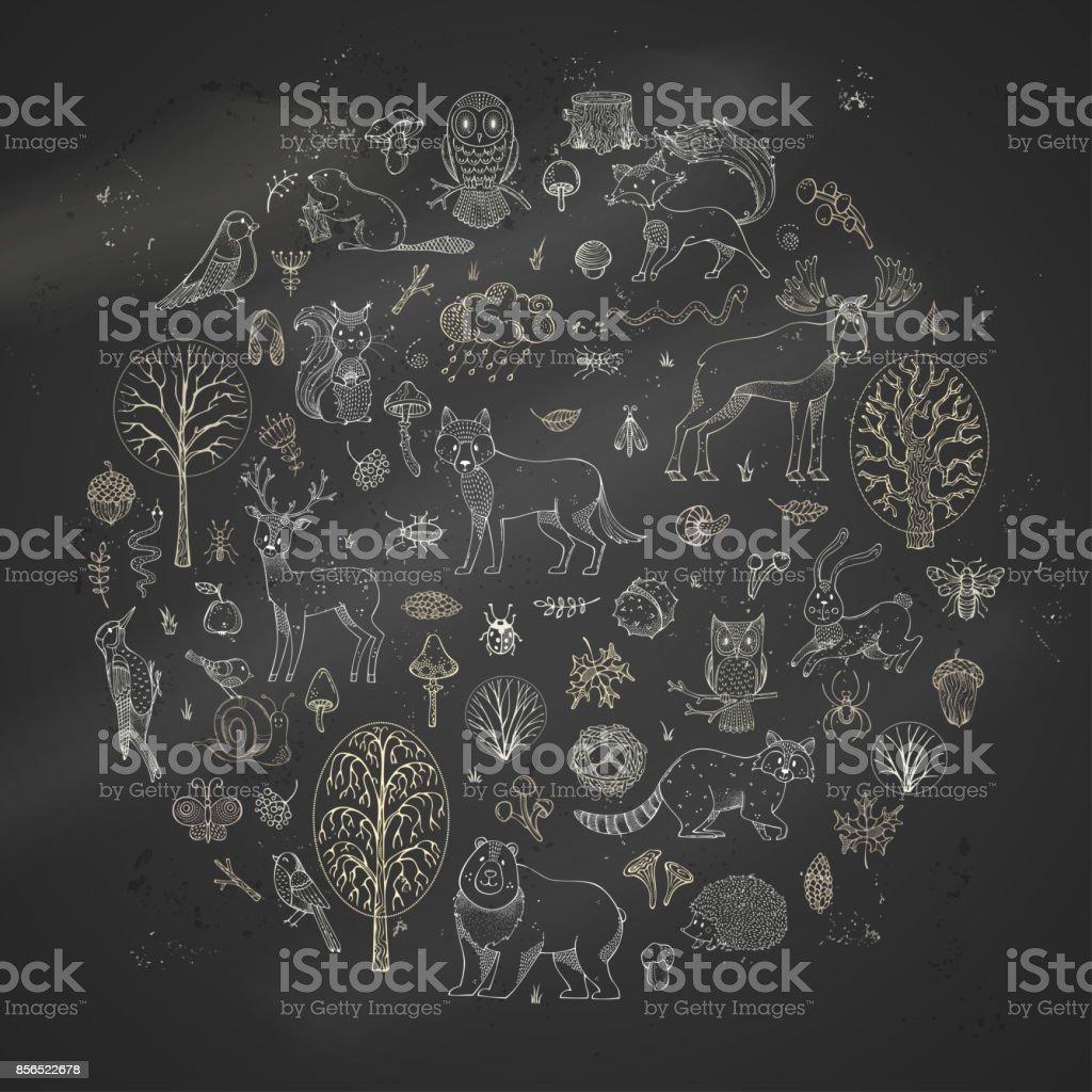 Big vector set of chalk animals and woodland elements on blackboard background. vector art illustration