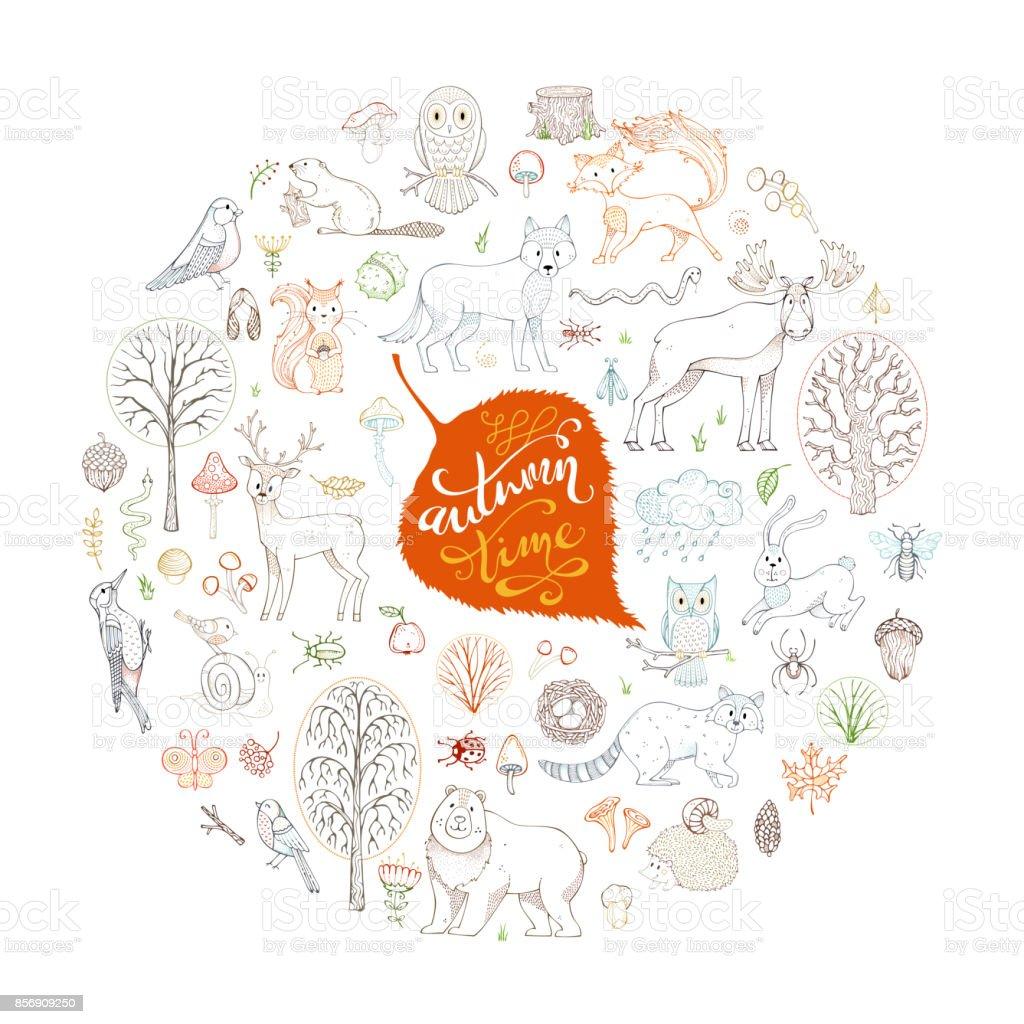 Big vector set of wild animals and autumn woodland elements. vector art illustration