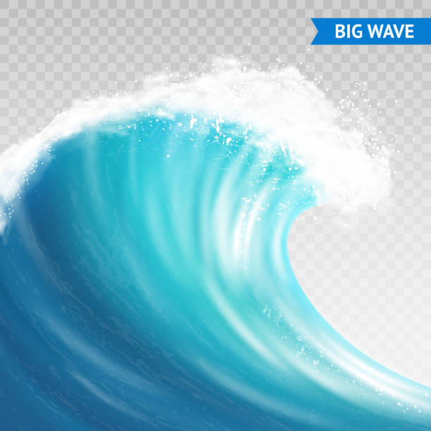 big wave transparent Big sea or ocean wave with spray, foam on crest and reflection on transparent background vector illustration tsunami stock illustrations