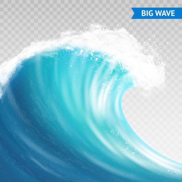 big wave transparent Big sea or ocean wave with spray, foam on crest and reflection on transparent background vector illustration tide stock illustrations