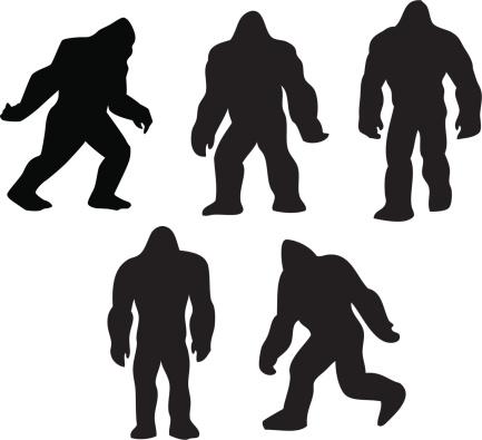 Bigfoot grouping