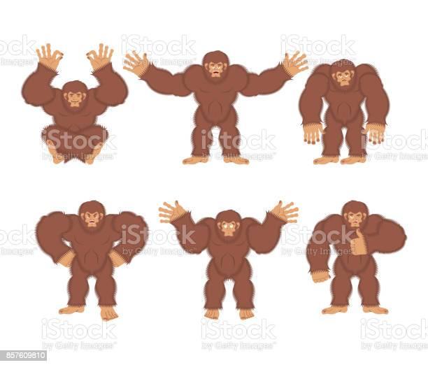 Bigfoot set poses and motion yeti happy and yoga abominable snowman vector id857609810?b=1&k=6&m=857609810&s=612x612&h=w0bsqxp0f6p5 vure9uhya3bnktc5em00l9spqtxsbe=