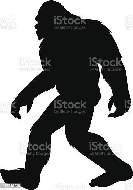 Bigfoot silhouette vector id165746228?b=1&k=6&m=165746228&s=612x612&h= w h7 dsyizxsnjmd7orzgyhq3fzspkbxd0mio3hy w=