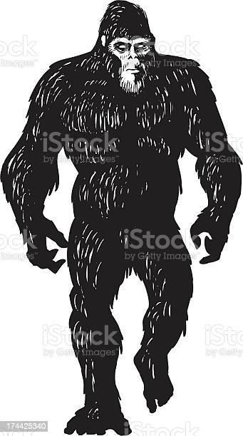 Bigfoot sketch vector id174425340?b=1&k=6&m=174425340&s=612x612&h=xs2cuhclcdg 2xtv2uptys9gyfzjtk5s vgbc9yin34=