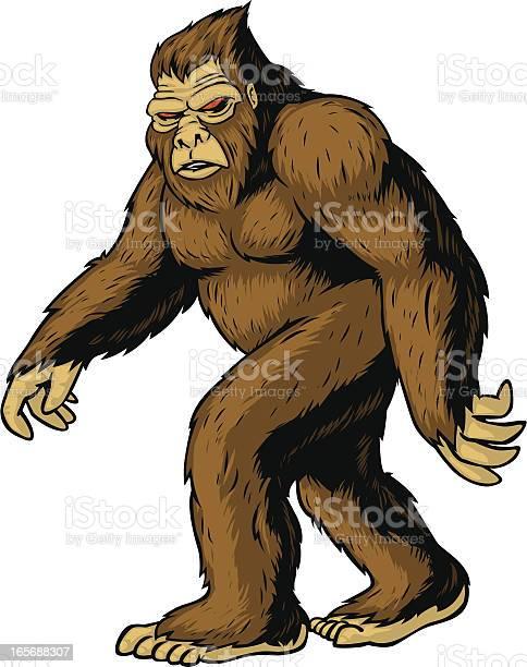 Bigfoot vector id165688307?b=1&k=6&m=165688307&s=612x612&h=4fr2fiu7v0b3iidyflzvqsejk8vz0z9wlycyyftf8 u=