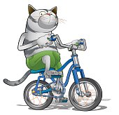Cat riding a bicycle isolated on white