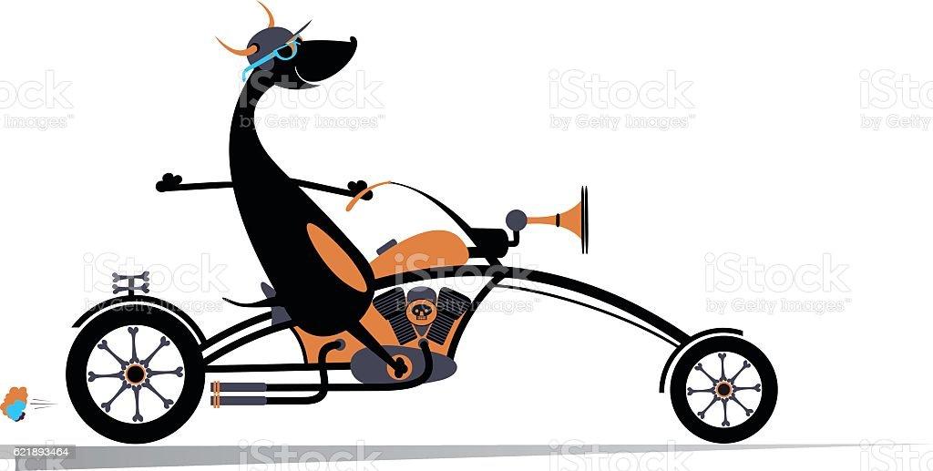 Biker dog vector art illustration