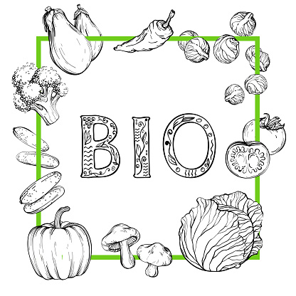 Bio Background With Handdrawn Vegetables Black And White