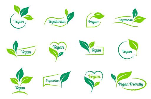 Bio, Ecology. Vector vegan sticker icons templates set.