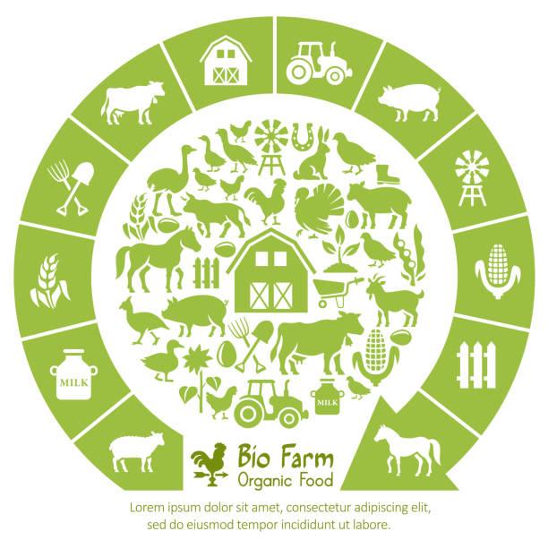Bio Farm Collage Bio Farm Collage organic farm stock illustrations