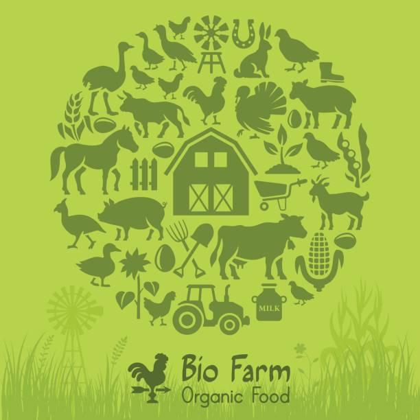 Bio Farm Bio Farm Collage organic farm stock illustrations