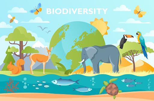 Biodiversity as natural wildlife