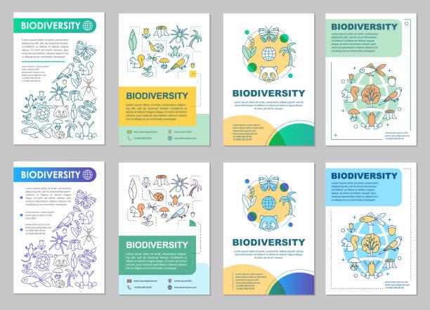 bildbanksillustrationer, clip art samt tecknat material och ikoner med broschyr om biologisk mångfald - biologisk mångfald