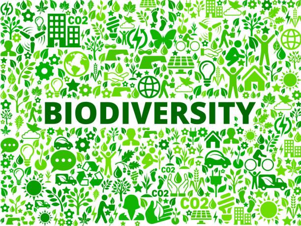 biologische vielfalt umweltschutz vektormuster symbol - altglas stock-grafiken, -clipart, -cartoons und -symbole