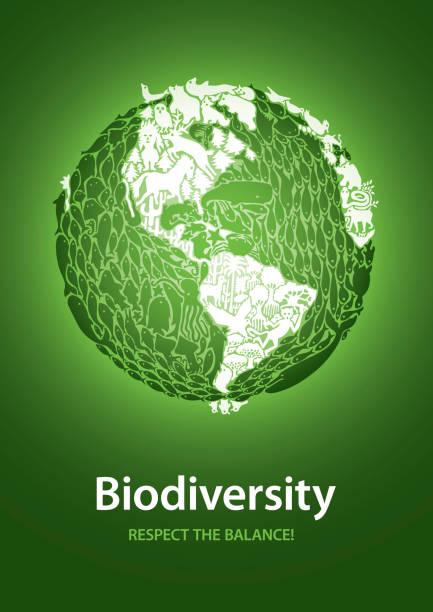 bildbanksillustrationer, clip art samt tecknat material och ikoner med biologisk mångfald: respektera balansen! - biologisk mångfald
