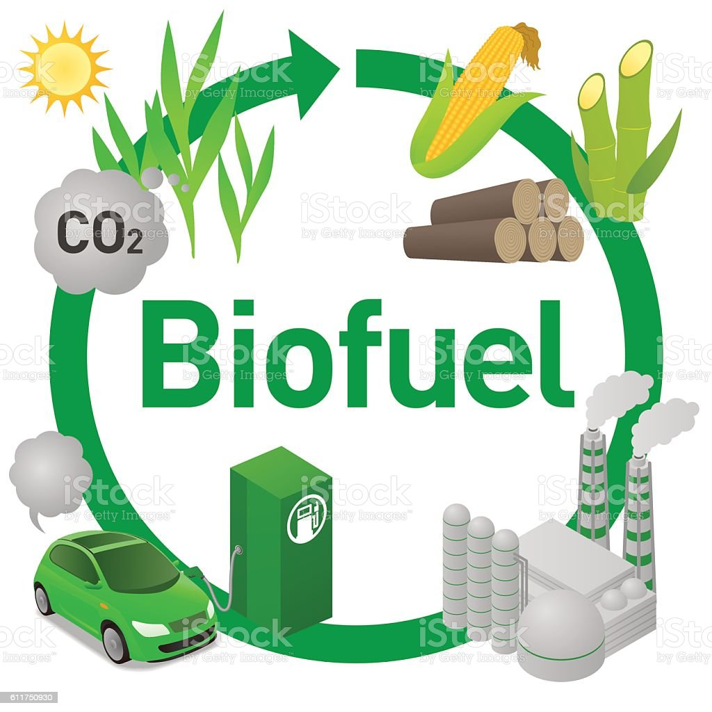 Biofuel life cycle, Biomass ethanol, diagram illustration vector art illustration