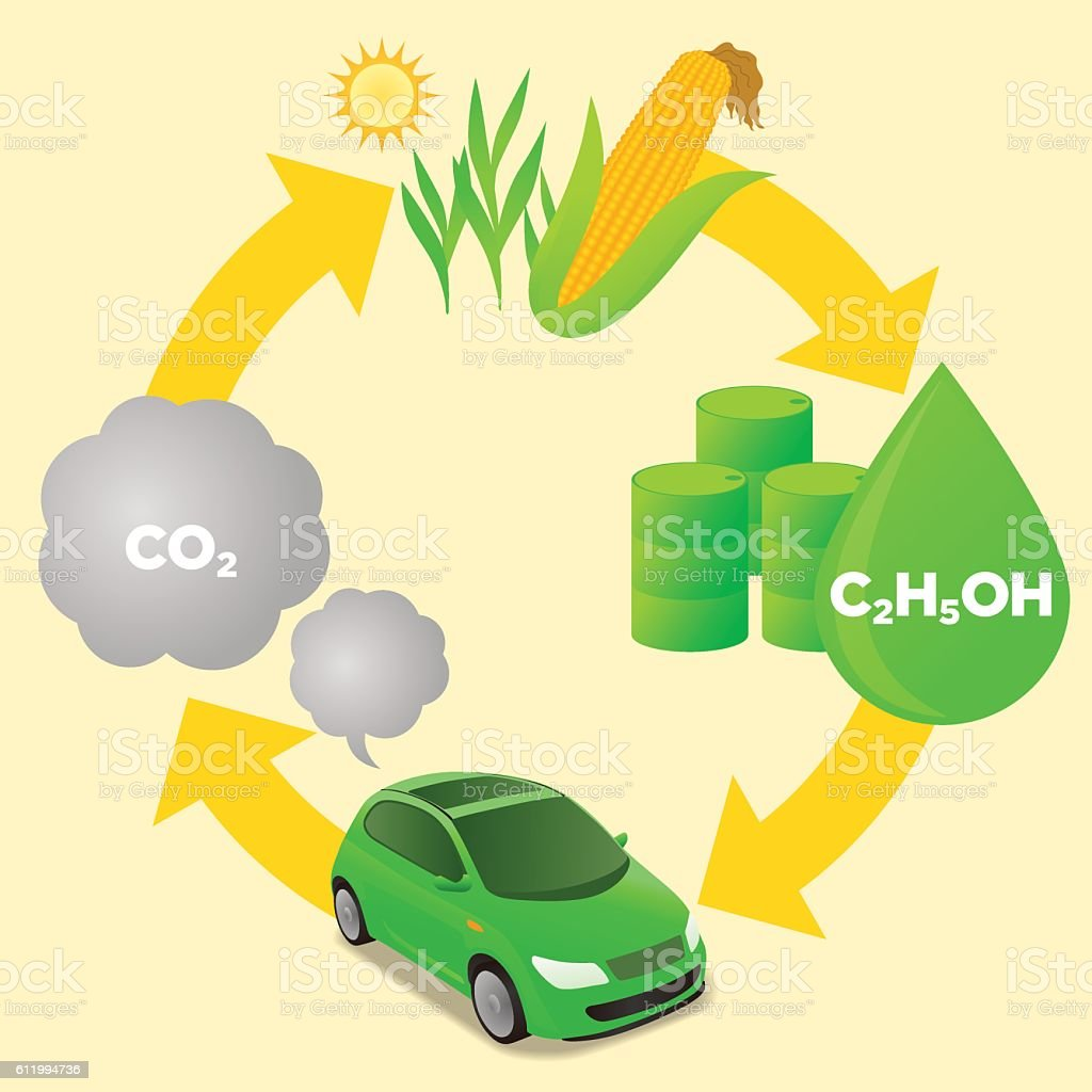 Biofuel life cycle biomass ethanol diagram illustration stock biofuel life cycle biomass ethanol diagram illustration royalty free biofuel life cycle biomass pooptronica Choice Image