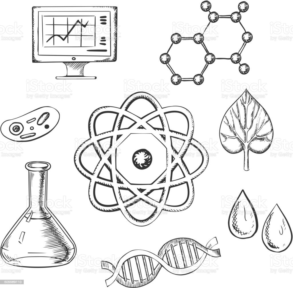 Biology and chemistry sketch icons vector art illustration