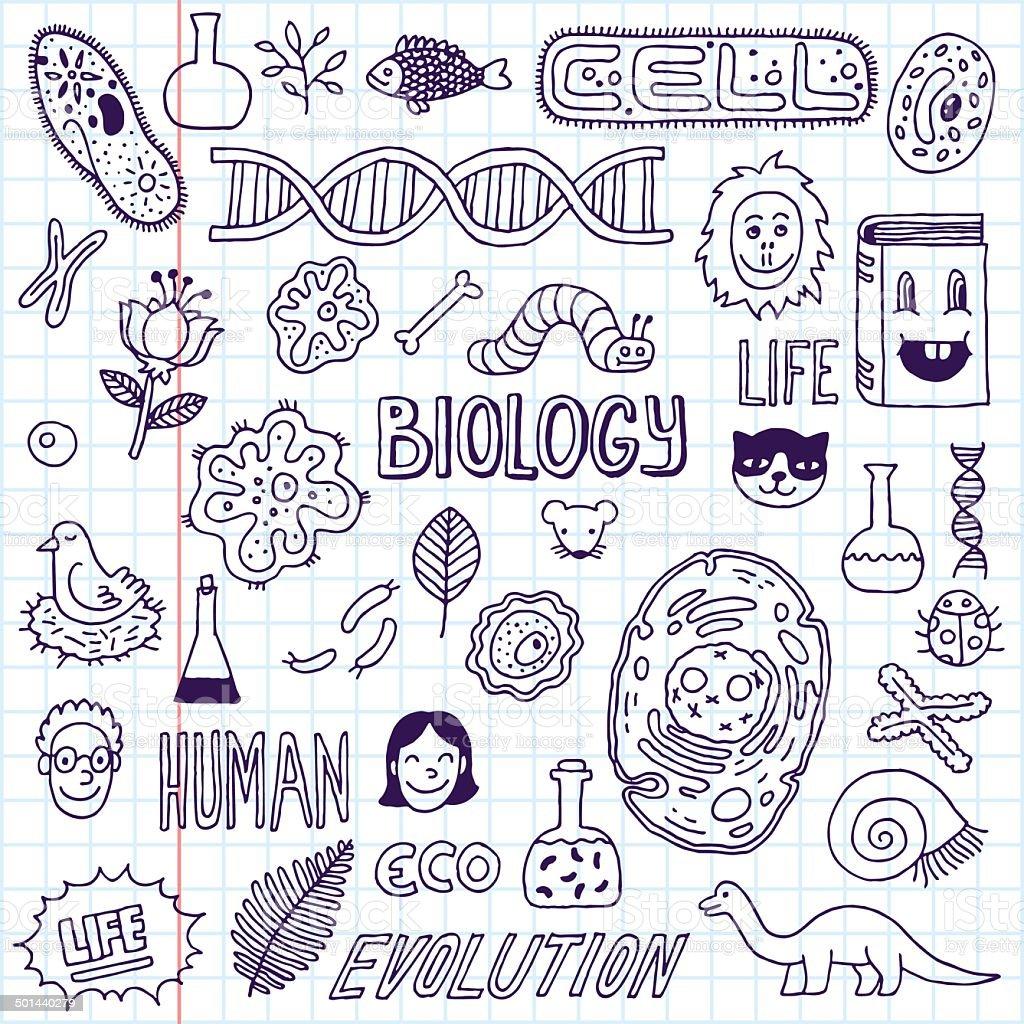 Biolog a dibujo a mano ilustraci n vectorial escuela - Decoraciones gramar ...