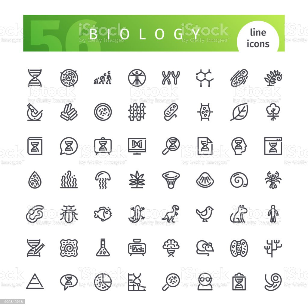 Biology Line Icons Set vector art illustration