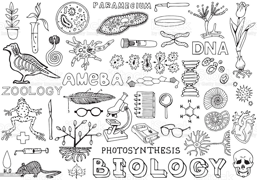 Biology Science Doodle Hand Drawing Isolated Elements