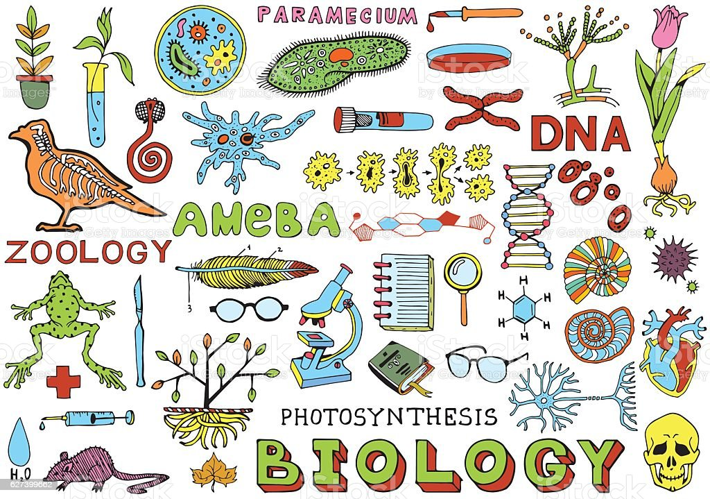 Biology Science Doodle Hand Drawing isolated Elements. Science and Education. vector art illustration