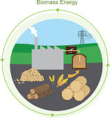 Vector illustration of Biomass mass energy plant showing the raw materials like wood chips, corn, wheat, hay and timber used as the resources for generating renewable energy of biomass . File is created using Adobe Illustrator CS6 in RGB color. There are no effects, blends, gradients ,transparencies. No clipping mask. File is arranged in labeled groups and layers for easy editing.