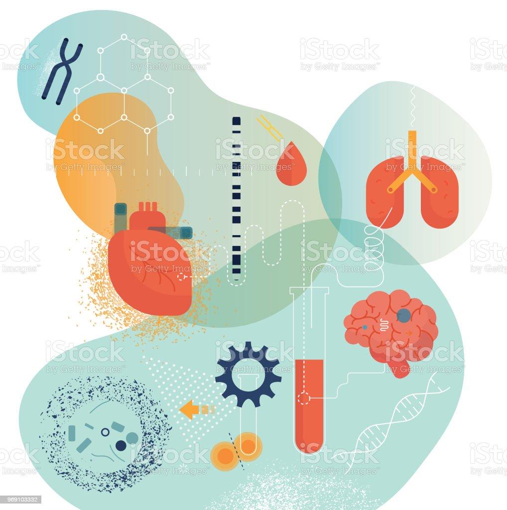 医用生体工学 - DNAのベクターア...