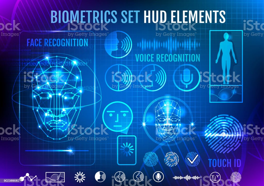 Biometrics Set HUD Elements vector art illustration
