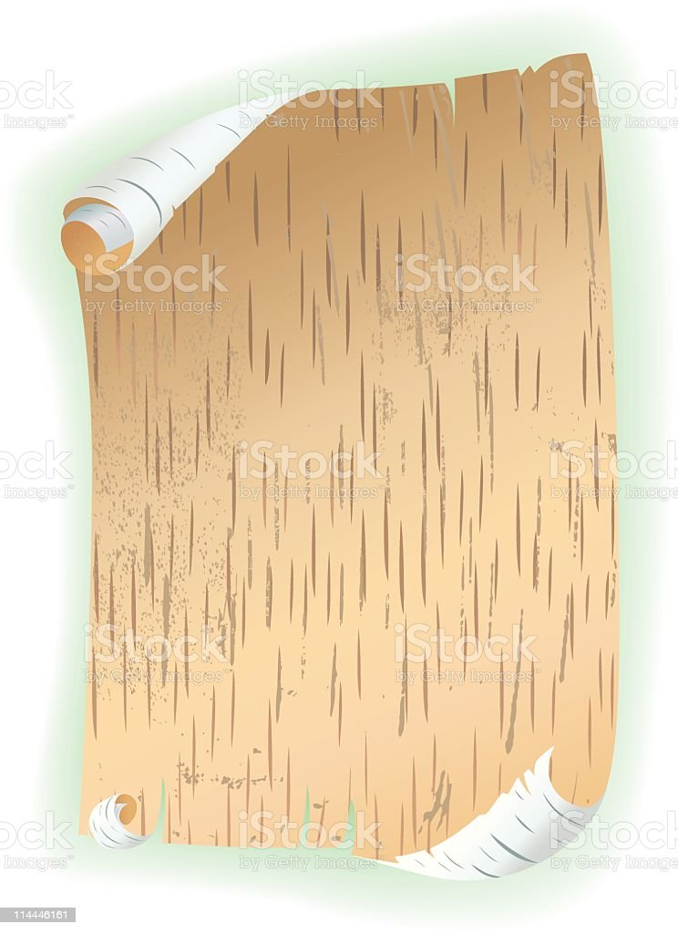 Birch Bark Scroll royalty-free birch bark scroll stock vector art & more images of backgrounds