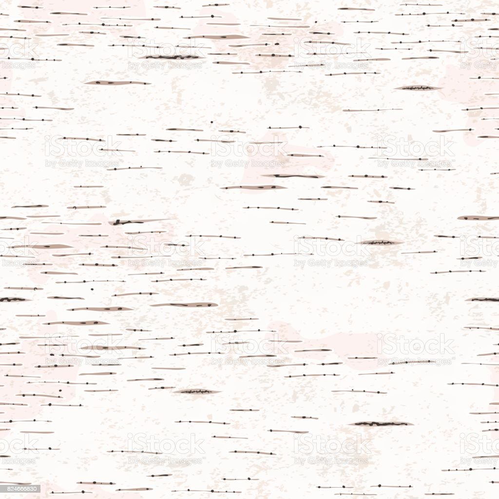 Birch Bark Texture vector art illustration
