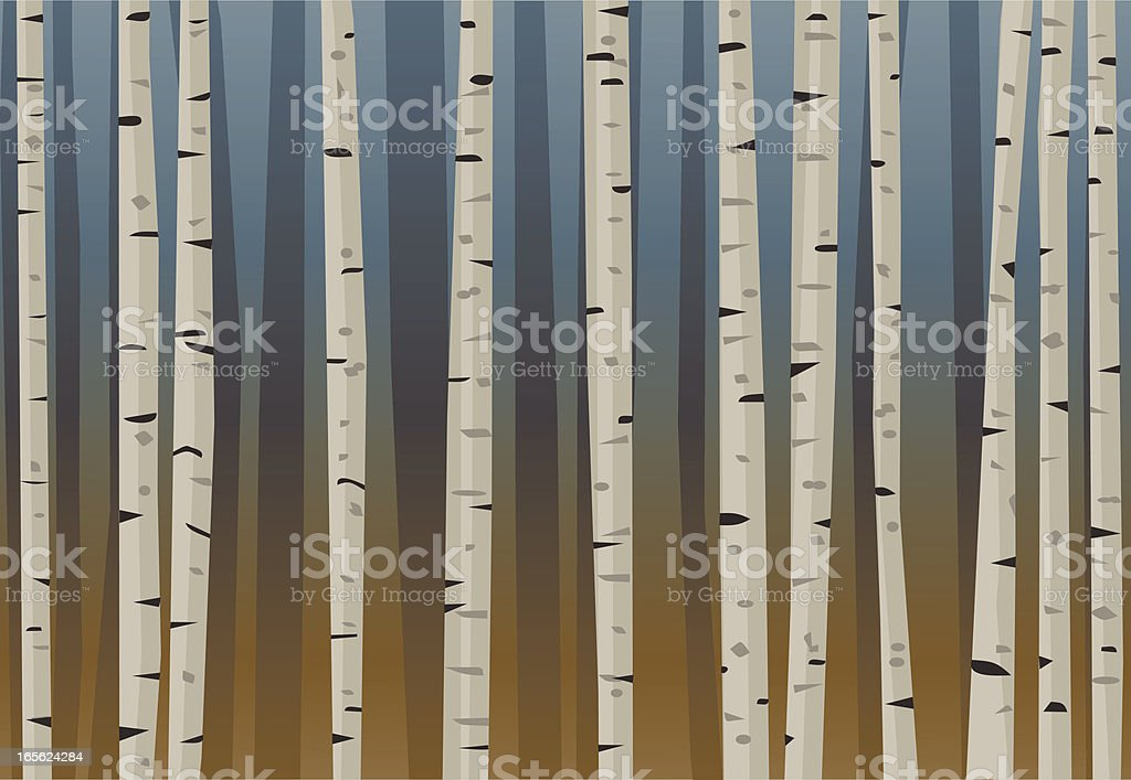 Birch Forest royalty-free stock vector art