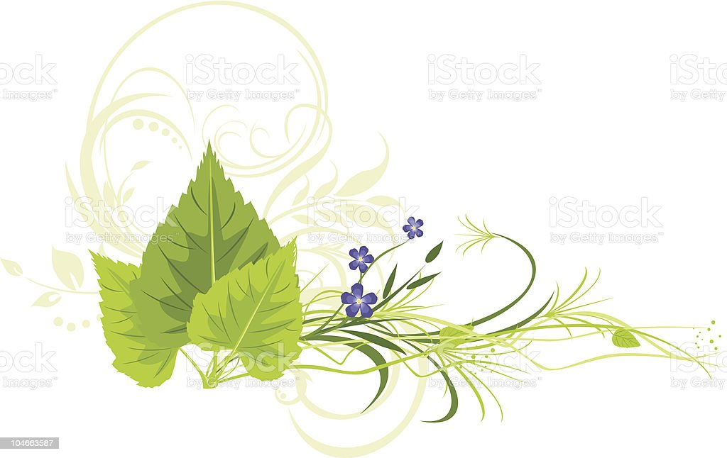 Birch leaves, flowers with grass and decorative ornament royalty-free stock vector art