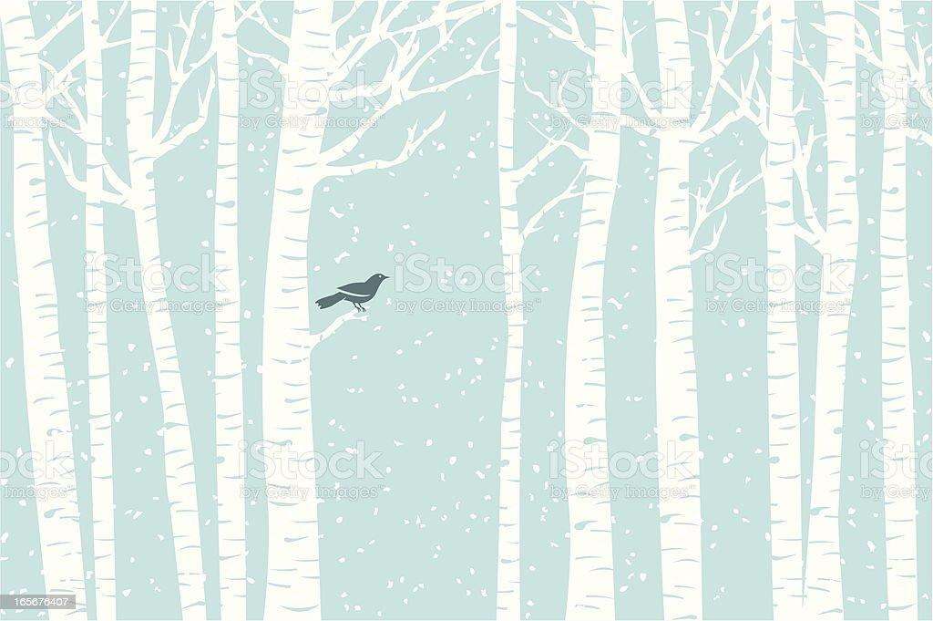 Birch Perch - Royalty-free Animal stock vector