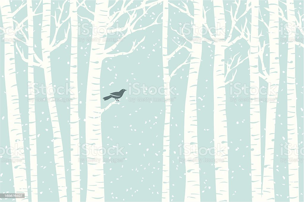 Birch Perch vector art illustration