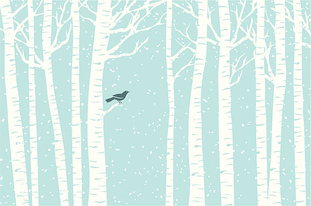 Birch Perch A bird perches among the birch trees while the snow softly falls. bird backgrounds stock illustrations