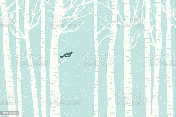 Birch Perch Stock Illustration - Download Image Now
